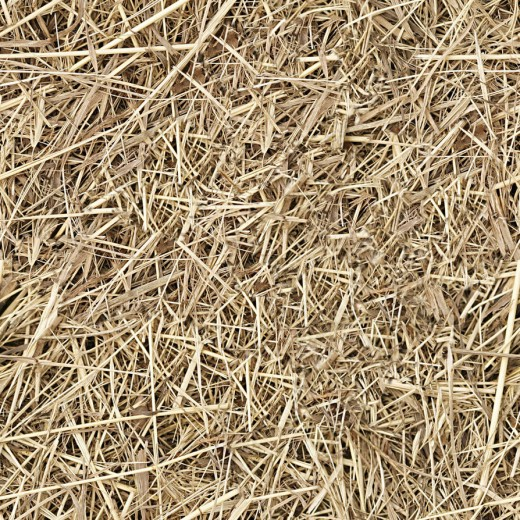 25 High Quality Free Hay And Straw Textures Designdune