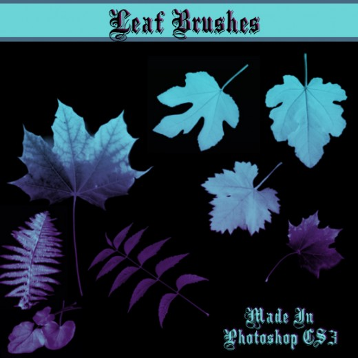 25 Free High Quality Photoshop Leaf Brushes for Your Designs
