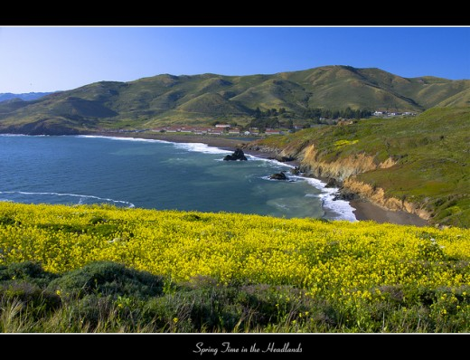 Spring Time in the Headlands