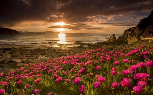 Sunset in Spring