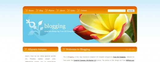 Blogging XHTML And CSS Template